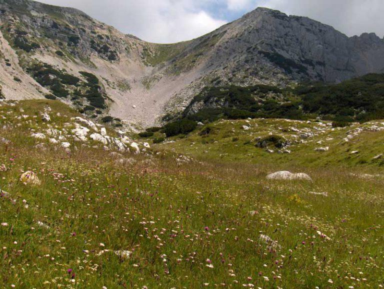 Agriturismo Lago di Garda - Soggiorno Lago di Garda